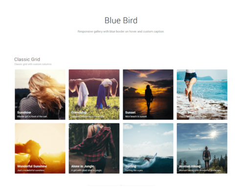Blue Bird Gallery Template - WordPress Gallery Extra