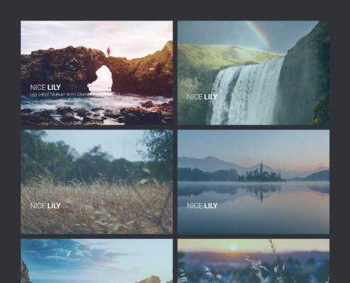 Lily Gallery Template - WordPress Gallery Extra